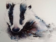 Original Watercolour Painting ... GORGEOUS BADGER.... Hidden Beauty