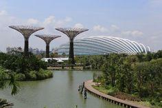 Los Jardines de la Bahía de Singapur: súper árboles e invernaderos colosales