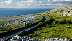 One of these days I will travel to Ireland. This site is everything you need to plan a cheap trip. 300 dollars for a week-long stay (lodging and transportation) almost any where in Ireland. I am so going!