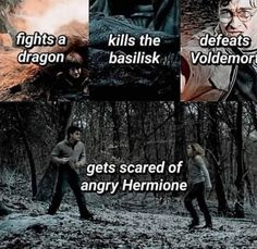 Harry Potter Fakta a Vtipy - The Brief Introduction So that you can Harry Knitter Harry Potter Mems, Images Harry Potter, Mundo Harry Potter, Harry Potter Spells, Harry Potter Hermione, Harry Potter Universal, Harry Potter Fandom, Funny Harry Potter Memes, Ron Weasley