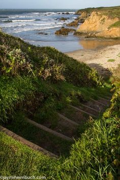 California coast shows off its wild beauty at Ano Nuevo State Park A state park since 1958, this spot about 55 miles south of San Francisco is a natural preserve for native wildlife and offers visitors incredible views of the rocky coastline.