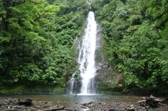 Amazing waterfll inside El Silencio Lodge, Sarchi Costa Rica - Photo