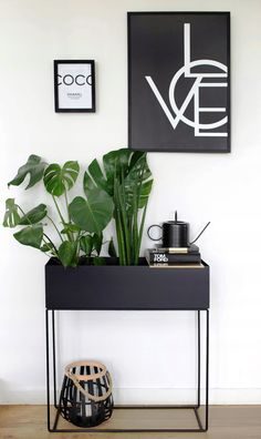 Your plants will never look boring again—not with our flower pots! Whether you want something modern, original or high-tech, for your indoor garden, there's a flower pot for everyone on this list. Bedroom Decor On A Budget, Grey Bedroom Decor, House Plants Decor, Plant Decor, Home Decor Kitchen, Diy Home Decor, Studio Apartment Decorating, Room Color Schemes, Diy Furniture