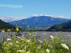Cozia Mountain and Olt River.