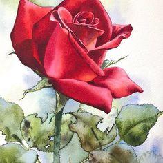 "2,302 Likes, 18 Comments - Kitipong Ti (@kitipong_maksin_artist) on Instagram: ""Magnolia flowers (Demo painting)#art#artist #artistic #artofvisuals #artists #artgallery #artstudio…"""