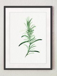 Rosmarin-Aquarell-Malerei. Grüne Küche Wand Kunstdruck. Kräuter-Diagramm-Hausgarten Wandbehang. Geschenkidee zum Muttertag. Art von Papier: Drucke bis zu (42 x 29, 7cm), 11 X 16 Zoll Größe auf Archivierung Säure frei 270g/m2 weiß Aquarell Fine Artpapier gedruckt und behält das