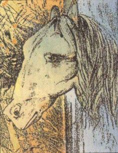 Horse And Frog Optical Illusion