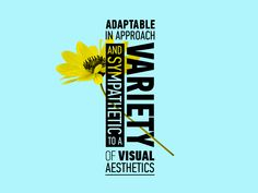 Adaptable in approach and sympathetic to a variety of visual aesthetics