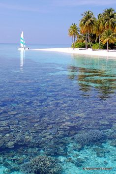 The Maldives!