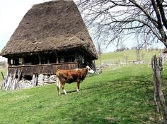 Via Romania  Postcards - Postales Facebook Page - Cottage in Mogoş - Alba County