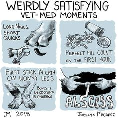 The BEST, weirdly satisfying moments in veterinary medicine! I think this speaks for most veterinarians, vet techs, and vet assistants... and all those who work in #veterinarymedicine