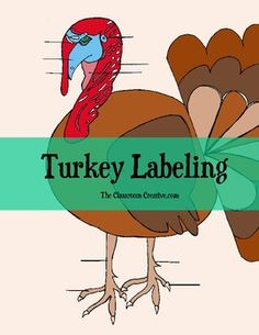 This labeling a turkey science activity is a nice supplement to your turkey units.