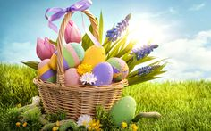 Are you looking for Happy Easter Wishes, Greeting, Easter Quotes, Messages, and Slogans for Easter Thank you are at the right place. Checkout our latest collection of Easter Wishes. Happy Easter Quotes, Happy Easter Wishes, Easter Wishes Messages, Gif Fete, Happy Easter Wallpaper, Easter Backgrounds, Desktop Backgrounds, Wallpapers Android, Easter Eggs