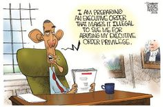 I am preparing an executive order making it illegal to sue me for abusing my executive order privilege.