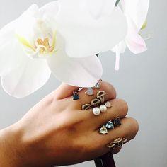 Paige Novick via Instagram