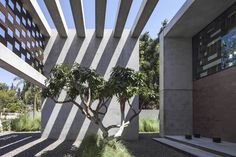 // In Praise of Shadows by Pitsou Kedem Architects   Yellowtrace