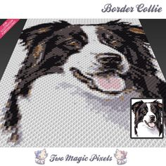 Border Collie C2C Crochet Graph | Craftsy