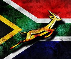 Springbok wallpaper by - - Free on ZEDGE™