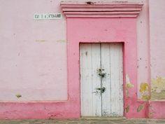 Baja, Mexico - pinks...