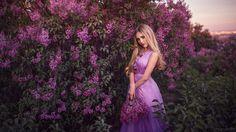 Lilac Dreams -