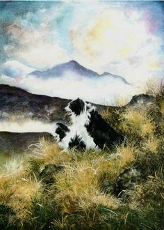 On the lookout-Border Collies-watercolour