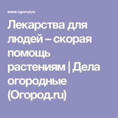Лекарства для людей – скорая помощь растениям | Дела огородные (Огород.ru)