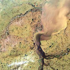 The Khatanga River delta in Siberia, Russia Picture: SPL / Barcroft Media