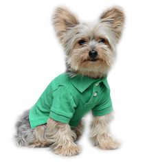 Stinky G Green Dog Polo Shirt ** Wow! I love this. Check it out now! : Dog Shirts