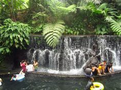 Vacation At Bato Springs Resort In San Pablo Laguna Philippine Beautiful Places To Vacation