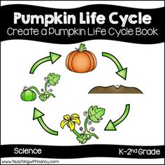 Welcome to Teaching with Nancy!Use this 7 page pumpkin life cycle booklet to give your students an opportunity to write their own non-fiction pumpkin book.  Each page contains a black and white drawing of a part of the life cycle of a pumpkin.  Have students color and label the picture appropriately.