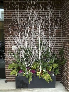 Sticks and twigs can be a thrifty source of drama for a container garden. Never tried container gardening in winter before? Well, you're missing out on a lot! Read our article to find the best winter container garden ideas. Christmas Urns, Christmas Holidays, Christmas Wreaths, Winter Holiday, Christmas Branches, Christmas Things, Christmas Garden, Cozy Christmas, Country Christmas