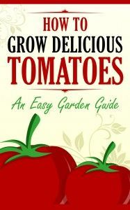 how-to-grow-delicious-tomatoes