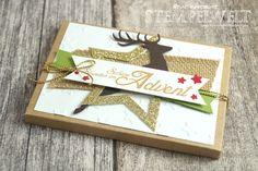 Stampin'Up! _Adentskalender_Schokolinsen_Adventskalender To go_Envelope Punch Board_1
