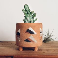 Opuntia and handmade ceramics. So much love for the little plants!