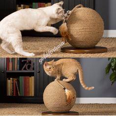 Big Cat Scratcher Kitty Scratching Pet Exercise Play Sisal Sphere Kitten Toy | Pet Supplies, Cat Supplies, Furniture & Scratchers | eBay!