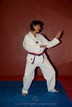 Taekwondo Belts, Taekwondo And Belt On Pinterest