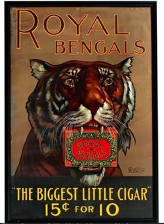 Royal Bengals Cigar Vintage Ad