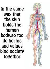 The norm to be thin-sociology?