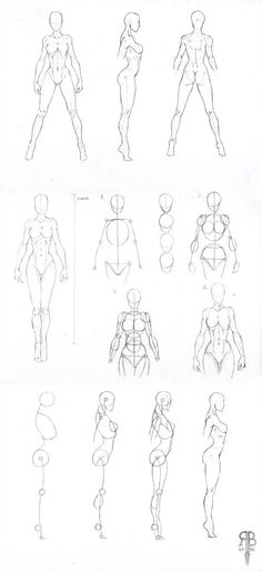 female body shapes part 2 by Rofelrolf on DeviantArt #Body #deviantART #Female #part #Rofelrolf #shapes