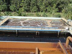 http://bunvisinh.com/mua-bun-vi-sinh-chat-luong.html  Bể Aerotank Mua bùn vi sinh chất lượng