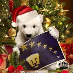 Navidad Puma