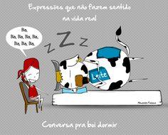 Expressão popular: CONVERSA PRA BOI DORMIR