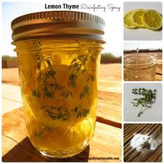 How to Make Lemon Thyme Herbal Disinfecting Spray. This herbal disinfectant spray is powerful, yet gentle enough for most surfaces of the home...