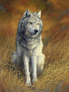 """""""Old and Wise"""", oil on canvas, 32"""" x 24"""", by Lucie Bilodeau."""