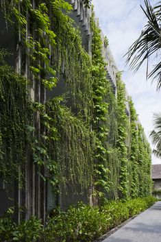 Gallery - Naman Retreat the Babylon / Vo Trong Nghia Architects - 9