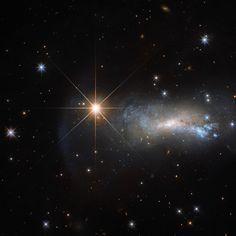 Un'immagine catturata dal telescopio spaziale Hubble ritrae la galassia irregolare NGC 7250, assieme alla stella TYC 3203-450-1, che è molto più vicina e quindi dalla Terra appare molto più brillante di un'intera galassia. La presenza di quella stella rende più difficile lo studio della galassia perchè la luce interferisce con quella più fioca di NGC 7250 inquinando le osservazioni di un oggetto interessante per le sue caratteristiche peculiari. Leggi i dettagli nell'articolo!