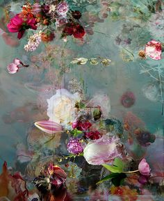 Sinking not Sinking ~ ~ Delicate dramas... inland photography and disordered landscapes by Isabelle Menin