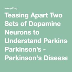 Teasing Apart Two Sets of Dopamine Neurons to Understand Parkinson's - Parkinson's Disease Foundation (PDF)
