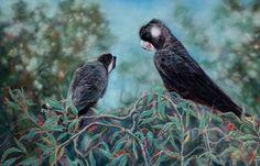 Painting: 'Black & White Tailed Cockatoo' Cockatoo, Australian Artists, Bird, Black And White, Painting, Animals, Blanco Y Negro, Animaux, Painting Art