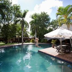 ★★★★ Sefapane Lodge and Safaris, Phalaborwa, Zuid-Afrika Swim Up Bar, Thatched Roof, Enjoying The Sun, Perfect Place, Safari, Swimming Pools, Drinks, Places, Outdoor Decor